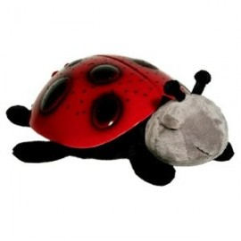 Twilight Ladybird Light